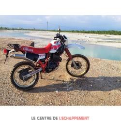 Silencieux ARROW Paris Dakar Replica Adapt.Yamaha XT 600 / TENERE 1983-1989